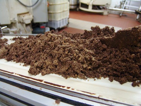 Crushed Gianduja mix on conveyor at Guido Gobino production facility